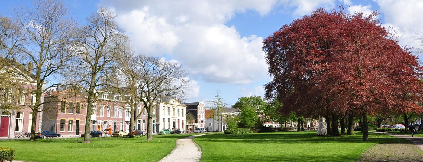"""Op 100m van het oudste stadspark van Nederland """"De Plantage""""."""